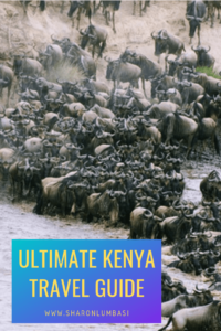 Ultimate Kenya Travel Guide