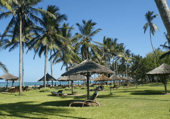 Guide on Things To Do In Mombasa