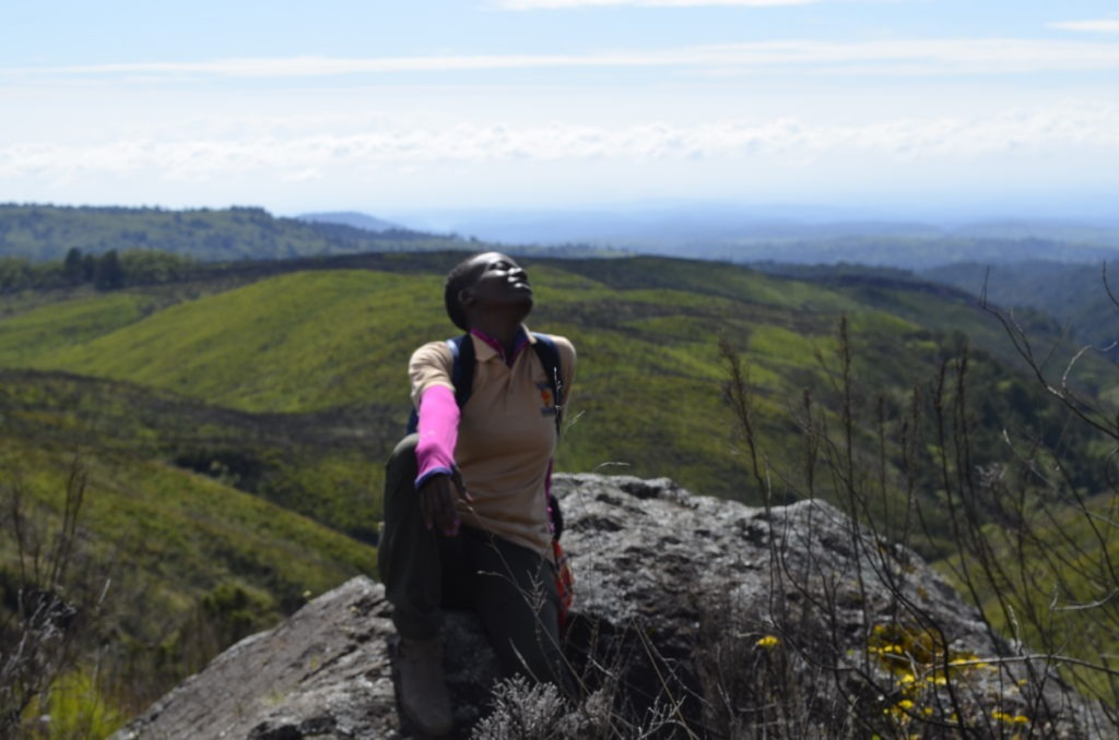 Hiking in Mount Kenya National Park