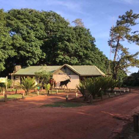 A Quick Tour of Shimba Hills Lodge